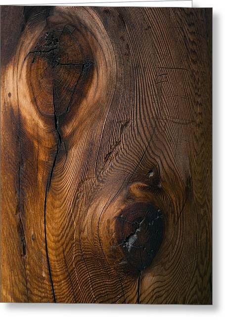 Dry Wood Greeting Cards - Horyuji Temple Column Detail - Nara Japan Greeting Card by Daniel Hagerman