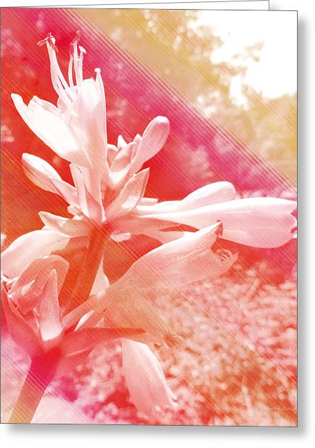 Analogous Greeting Cards - Hosta Flower Greeting Card by Shawna  Rowe