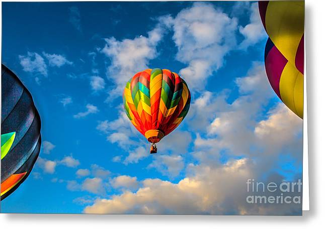 Hot Air Balloon Framed Greeting Card by Robert Bales