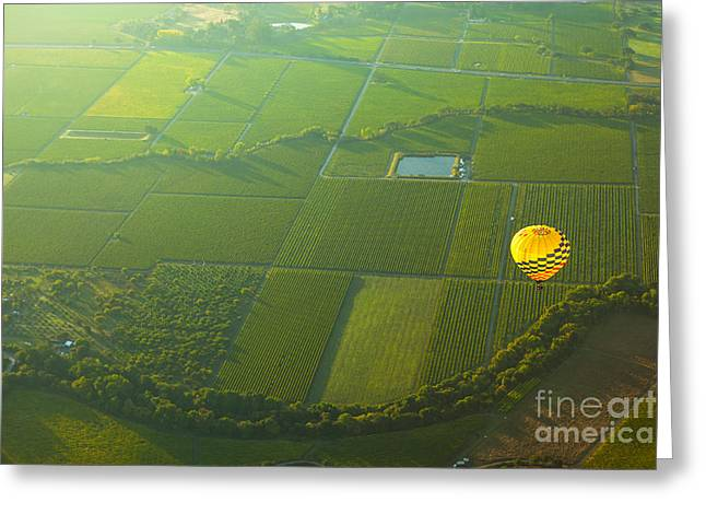 Winemaking Photographs Greeting Cards - Hot Air Balloon Over Napa Valley California Greeting Card by Diane Diederich