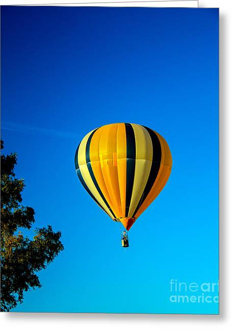 West Wetland Park Greeting Cards - Hot Air Balloon Greeting Card by Robert Bales