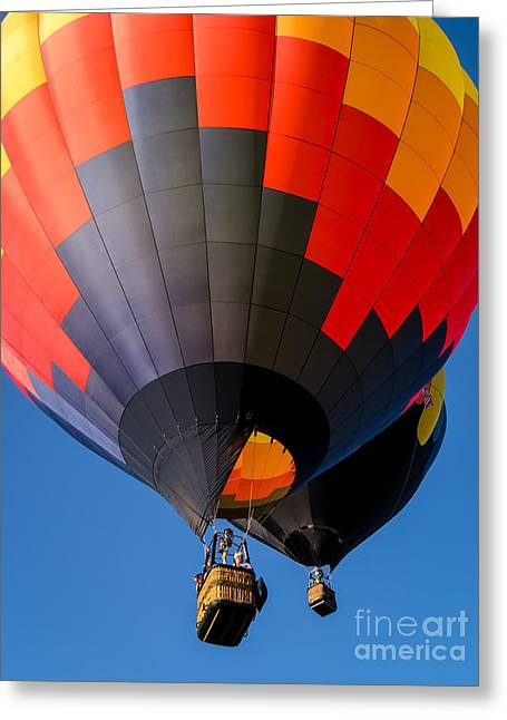 """hot Air Balloon"" Greeting Cards - Hot Air Ballooning Greeting Card by Edward Fielding"