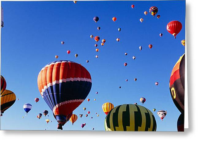 Mid Air Greeting Cards - Hot Air Balloons At The International Greeting Card by Panoramic Images