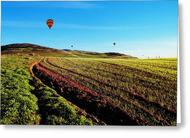 Hot Air Balloons On A Golden Afternoon Greeting Card by Glenn McCarthy