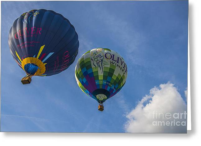 Ascending Risen Greeting Cards - Hot Air Balloons OW 7 Greeting Card by David Haskett