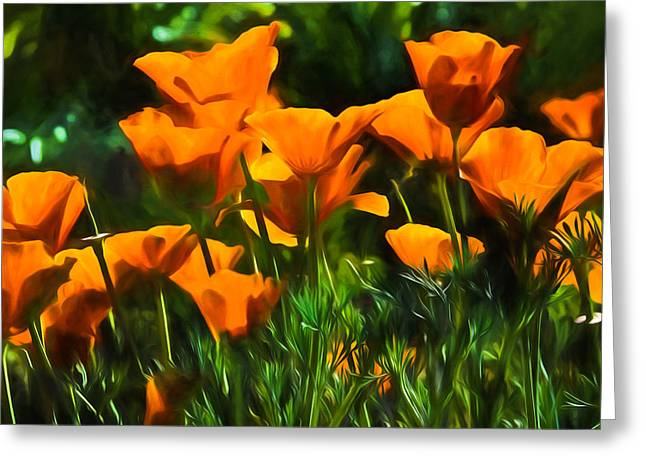 Translucence Greeting Cards - Hot California Poppies Impression Greeting Card by Georgia Mizuleva
