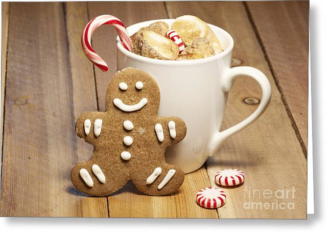 Yuletide Greeting Cards - Hot Chocolate Toasted Marshmallows and a Gingerbread Cookie Greeting Card by Juli Scalzi