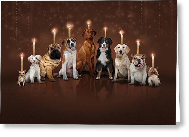 Hannukah Greeting Cards - Hot Dog Its Hanukkah Greeting Card by Robert Williams