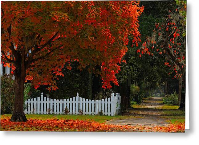 Historic Home Greeting Cards - Hot Flash Greeting Card by Laura Ragland