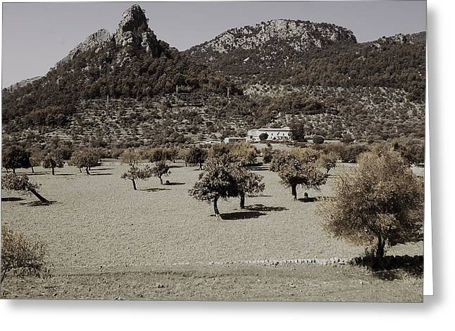 The Hills Greeting Cards - hot Mallorca Greeting Card by Clive Beake