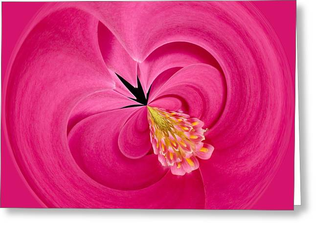 Process Greeting Cards - Hot Pink and Round Greeting Card by Anne Gilbert