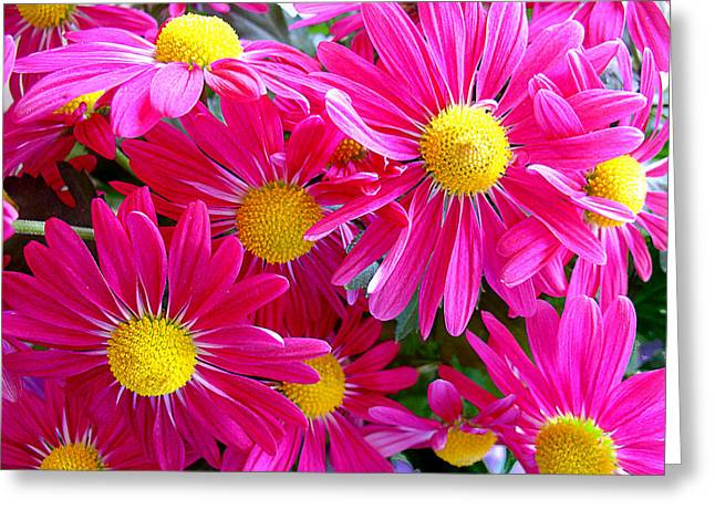 Flower Center Greeting Cards - Hot Pink Greeting Card by Julie Palencia