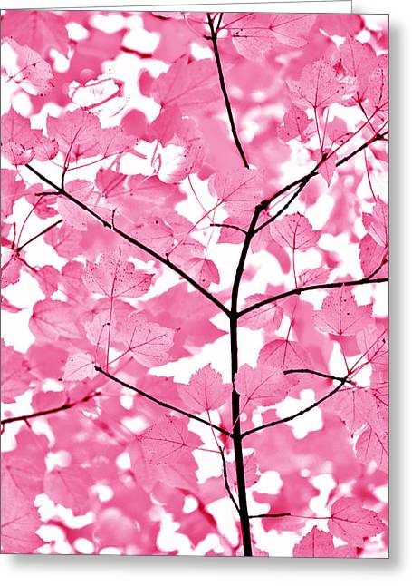 Fushia Greeting Cards - Hot Pink Leaves Melody Greeting Card by Jennie Marie Schell