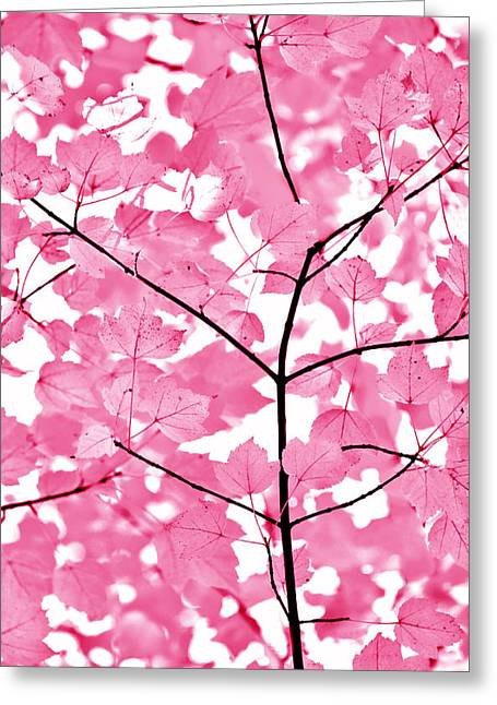 Hot Pink Leaves Melody Greeting Card by Jennie Marie Schell