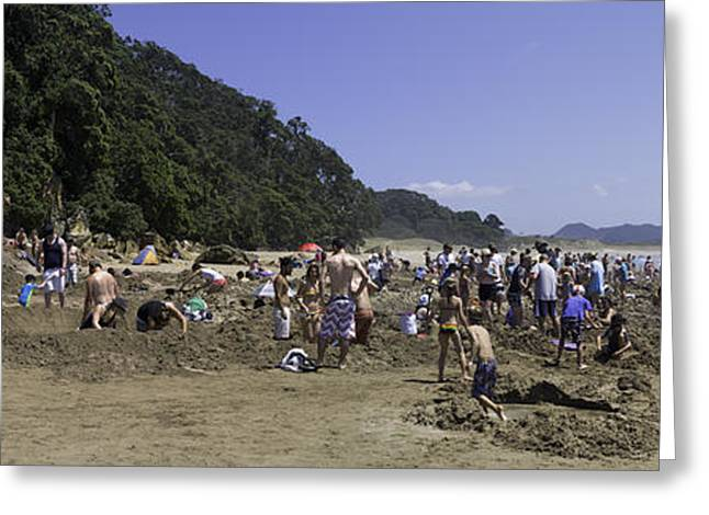 A Hot Summer Day Greeting Cards - Hot Water Beach Greeting Card by Tim Mulholland