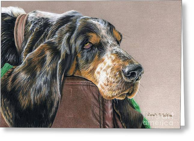 Photo Realism Drawings Greeting Cards - Hound Dog Greeting Card by Sarah Batalka