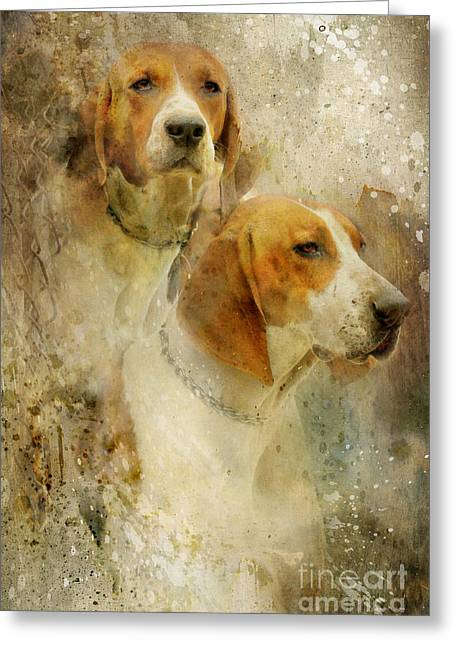 Foxhunting Greeting Cards - Hounds Greeting Card by Lyndsey Warren