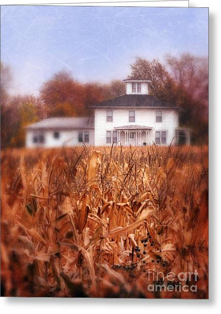 Cornfield Greeting Cards - House and Autumn Cornfield Greeting Card by Jill Battaglia