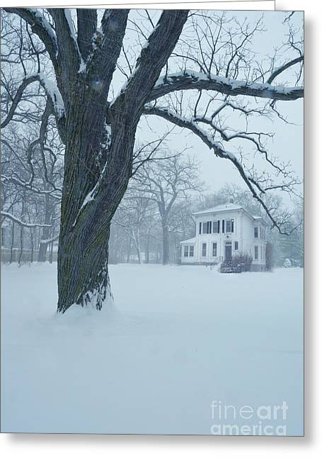 Winter Scenes Rural Scenes Greeting Cards - House and Big Tree in Snow Greeting Card by Jill Battaglia