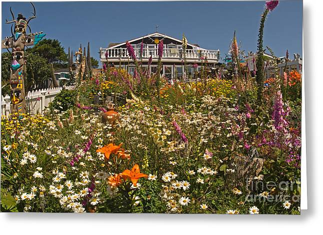 Californian Greeting Cards - House And Garden In Mendocino Greeting Card by Ron Sanford
