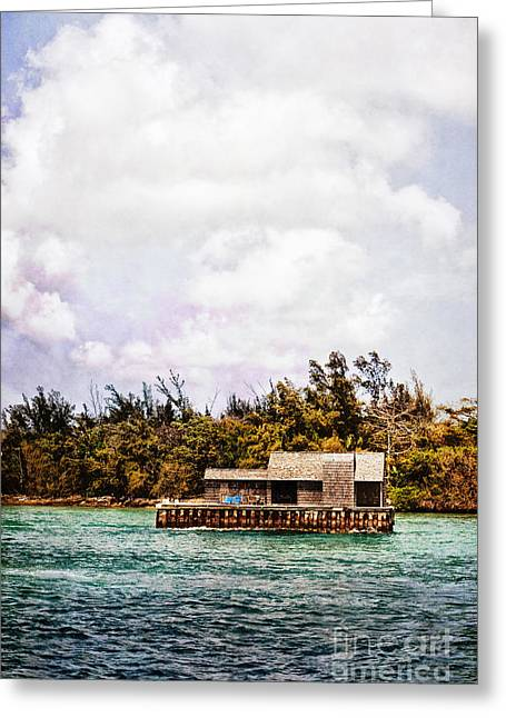 Floating House Greeting Cards - House Boat Greeting Card by Margie Hurwich