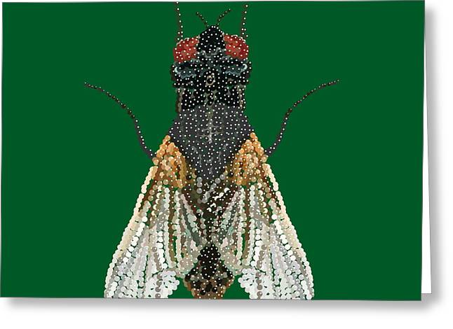 House Fly In Green Greeting Card by R  Allen Swezey