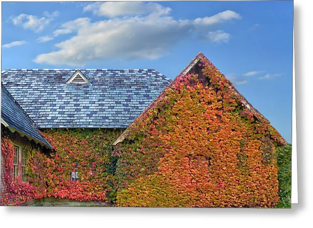 Photos Of Autumn Greeting Cards - House of Ivy Greeting Card by Steven  Michael