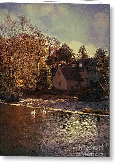 House On The River Greeting Card by Amanda Elwell