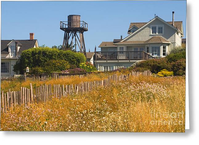Main Street Greeting Cards - Houses In Mendocino, California Greeting Card by Ron Sanford