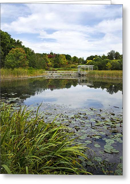 Finger Lakes Greeting Cards - Houston Pond Greeting Card by Christina Rollo