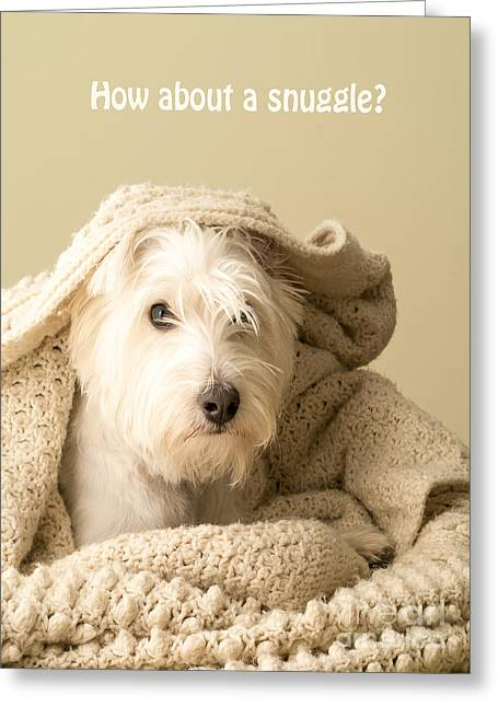 Puppies Greeting Cards - How about a snuggle card Greeting Card by Edward Fielding