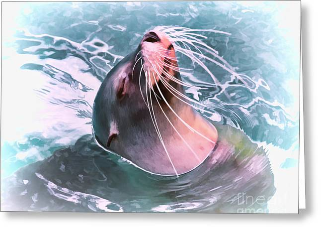 California Sea Lions Greeting Cards - How Cool Greeting Card by TN Fairey