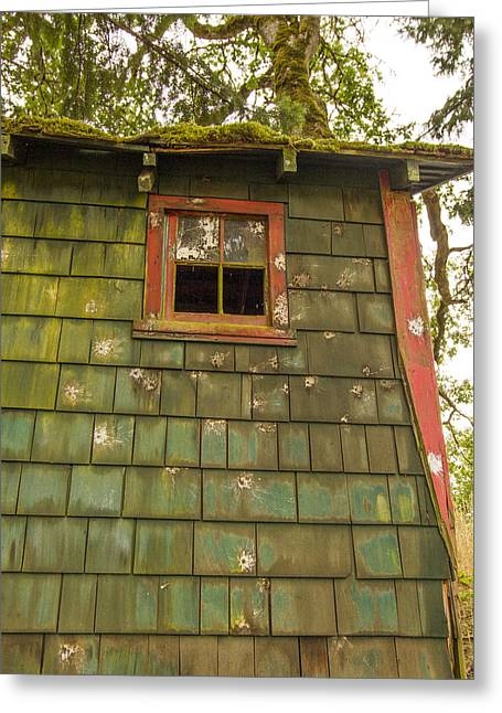 Cabin Window Greeting Cards - How did that get there Greeting Card by Jean Noren