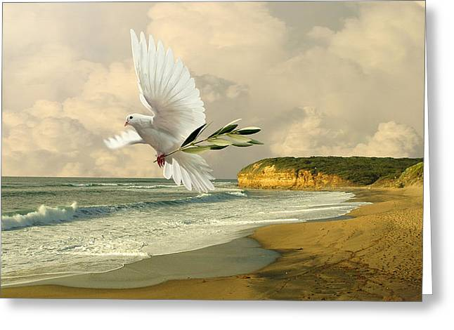 Olive Branch Greeting Cards - How Many Seas Must a White Dove Sail? Greeting Card by IM Spadecaller