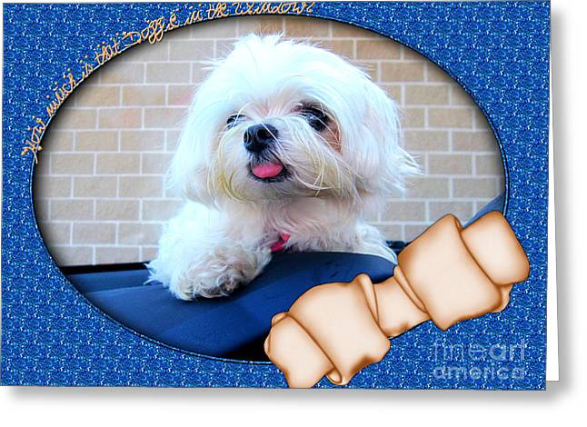 Toy Maltese Greeting Cards - How Much Is That Doggie In The Window Greeting Card by Margaret Newcomb