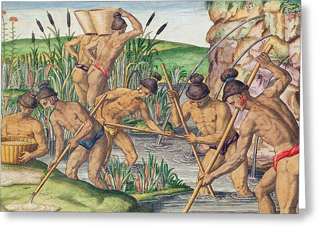 Appalachian. Greeting Cards - How the Indians Collect Gold from the Streams Greeting Card by Jacques Le Moyne