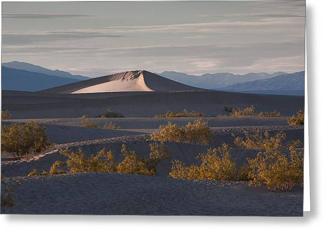 Pyramids Greeting Cards - How ya Dune Greeting Card by Peter Tellone