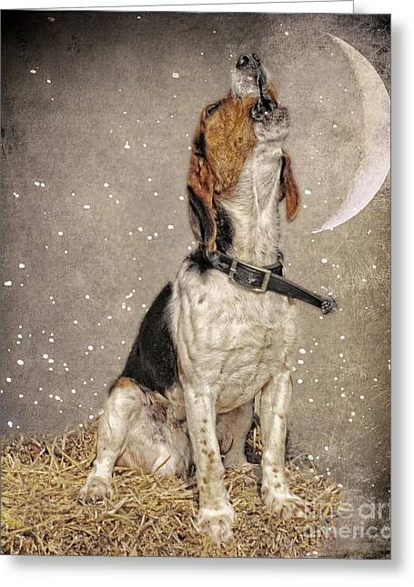 Jak Of Arts Photography Greeting Cards - Howl at the Moon Greeting Card by Jak of Arts Photography