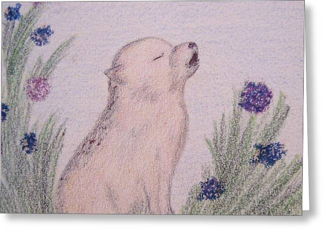 Wolf Pastels Greeting Cards - Howling Wolf Pup Greeting Card by Christine Corretti