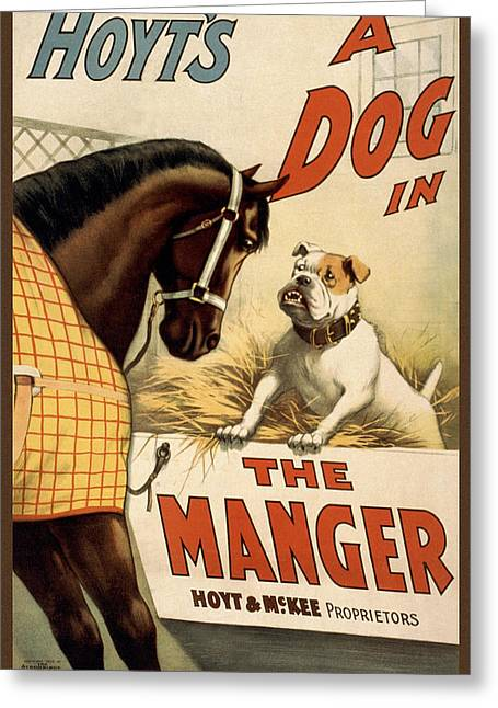Farm Horse Greeting Cards - Hoyts A dog in the manger Greeting Card by Aged Pixel