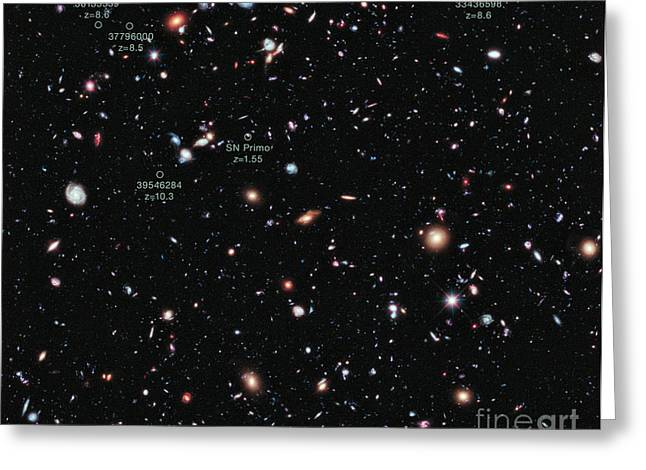 Celestial Bodies Greeting Cards - Hubble Extreme Deep Field Xdf Greeting Card by Science Source