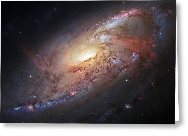 Star Hatchery Greeting Cards - Hubble view of M 106 Greeting Card by Adam Romanowicz