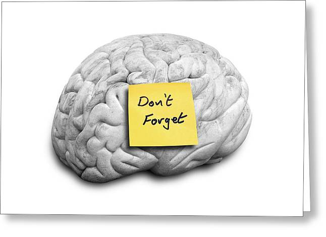 Human Brain With An Adhesive Note Greeting Card by Victor De Schwanberg