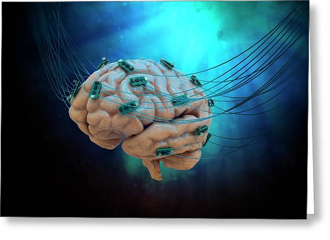 Human Brain With Cables And Microchips Greeting Card by Andrzej Wojcicki
