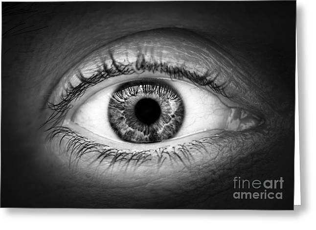 Human eye Greeting Card by Elena Elisseeva