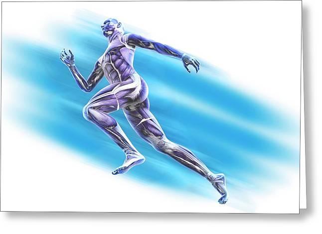 Human Musculature Greeting Card by Andrzej Wojcicki