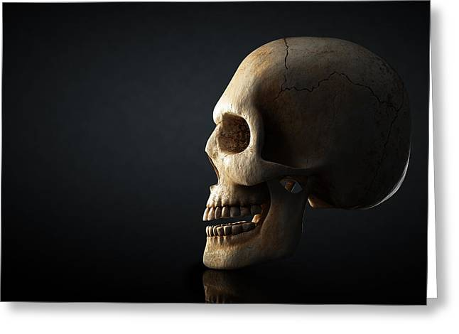 Creepy Greeting Cards - Human skull profile on dark background Greeting Card by Johan Swanepoel