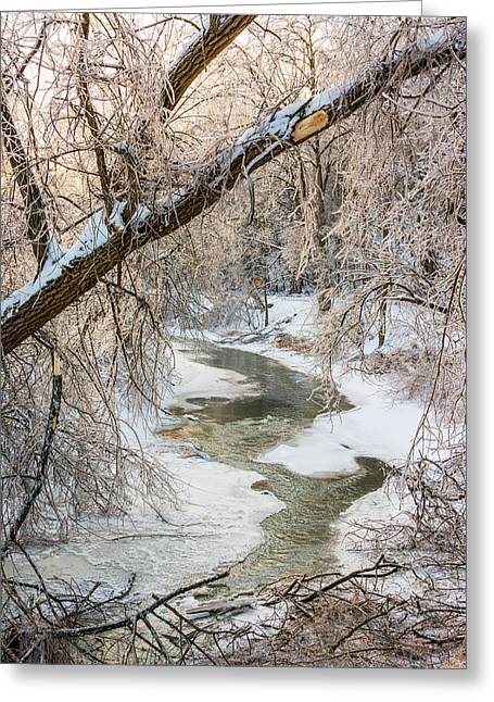 Storm Prints Photographs Greeting Cards - Humber River Winter 2 Greeting Card by Steve Harrington