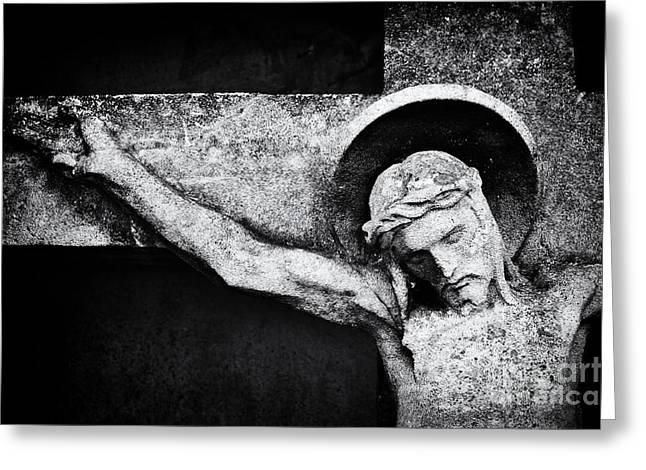 Divine Photographs Greeting Cards - Humility Greeting Card by Tim Gainey