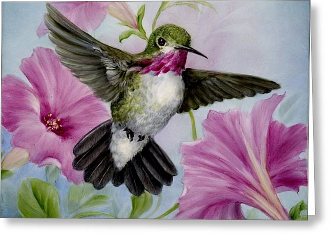 Hummer in Petunias Greeting Card by Summer Celeste